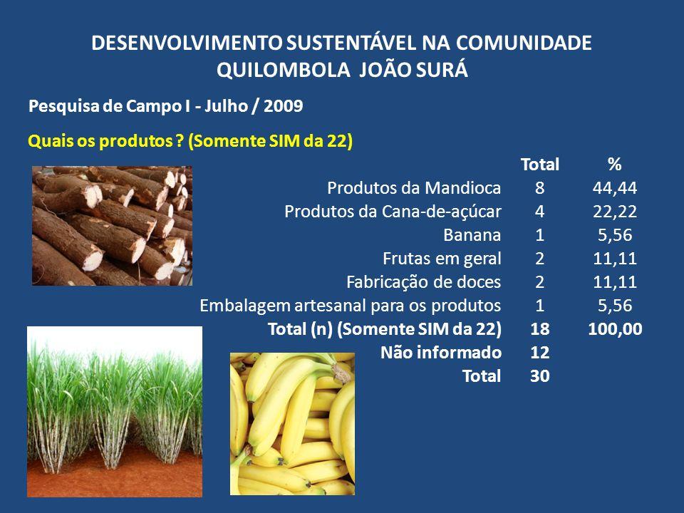 DESENVOLVIMENTO SUSTENTÁVEL NA COMUNIDADE QUILOMBOLA JOÃO SURÁ Pesquisa de Campo I - Julho / 2009 Quais os produtos ? (Somente SIM da 22) Total% Produ