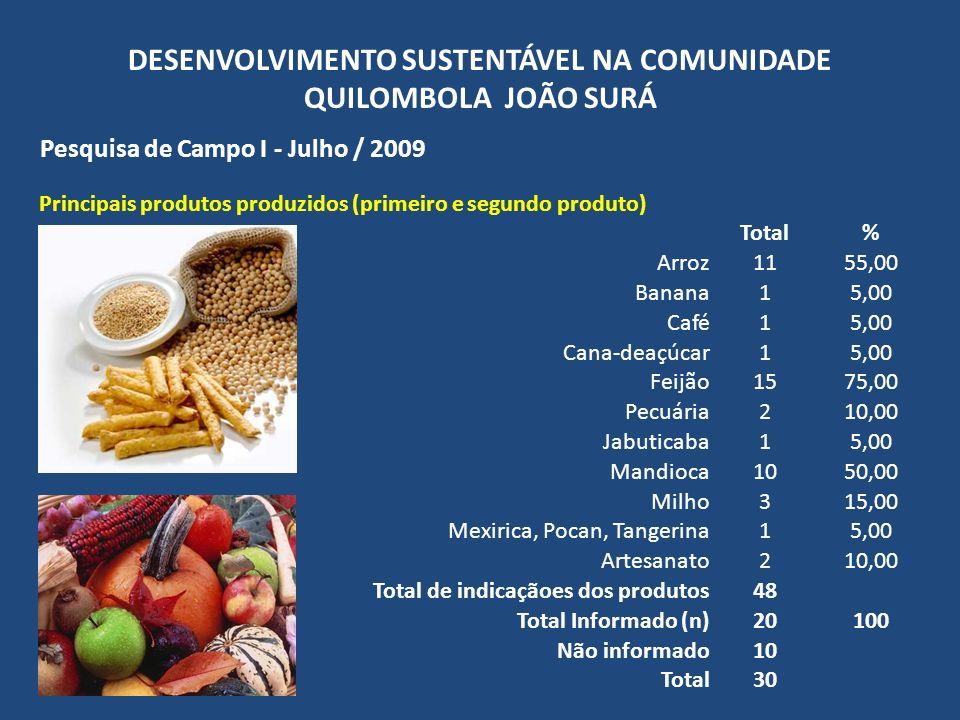 DESENVOLVIMENTO SUSTENTÁVEL NA COMUNIDADE QUILOMBOLA JOÃO SURÁ Pesquisa de Campo I - Julho / 2009 Principais produtos produzidos (primeiro e segundo p