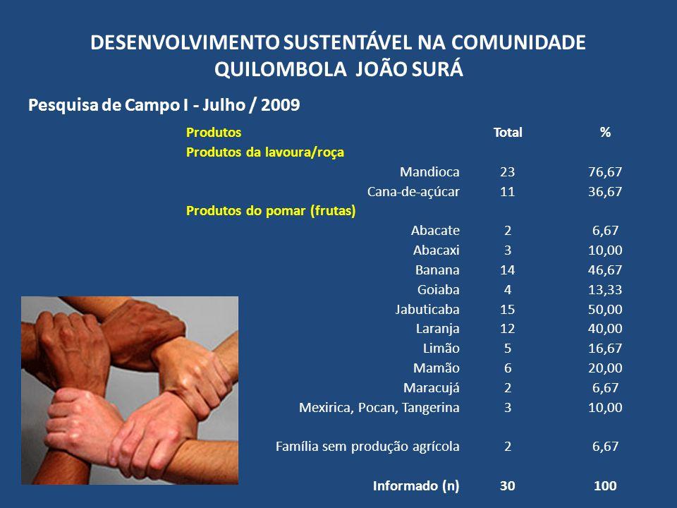 DESENVOLVIMENTO SUSTENTÁVEL NA COMUNIDADE QUILOMBOLA JOÃO SURÁ Pesquisa de Campo I - Julho / 2009 ProdutosTotal% Produtos da lavoura/roça Mandioca2376