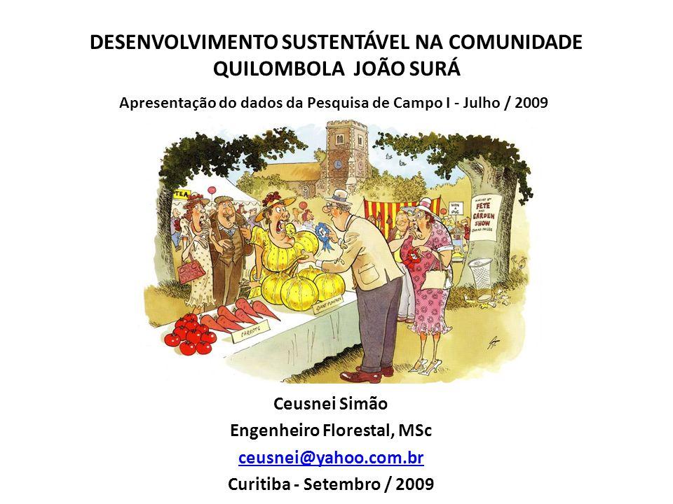 DESENVOLVIMENTO SUSTENTÁVEL NA COMUNIDADE QUILOMBOLA JOÃO SURÁ Ceusnei Simão Engenheiro Florestal, MSc ceusnei@yahoo.com.br Curitiba - Setembro / 2009