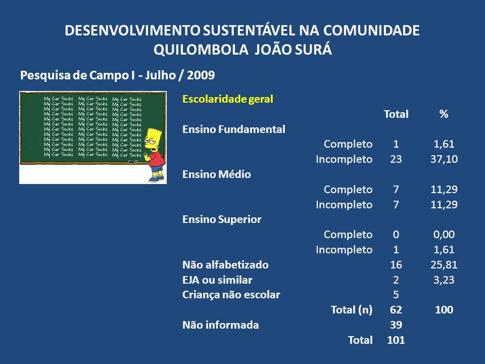 DESENVOLVIMENTO SUSTENTÁVEL NA COMUNIDADE QUILOMBOLA JOÃO SURÁ Pesquisa de Campo I - Julho / 2009 ProdutosTotal% Produtos da lavoura/roça Mandioca2376,67 Cana-de-açúcar1136,67 Produtos do pomar (frutas) Abacate26,67 Abacaxi310,00 Banana1446,67 Goiaba413,33 Jabuticaba1550,00 Laranja1240,00 Limão516,67 Mamão620,00 Maracujá26,67 Mexirica, Pocan, Tangerina310,00 Família sem produção agrícola26,67 Informado (n)30100