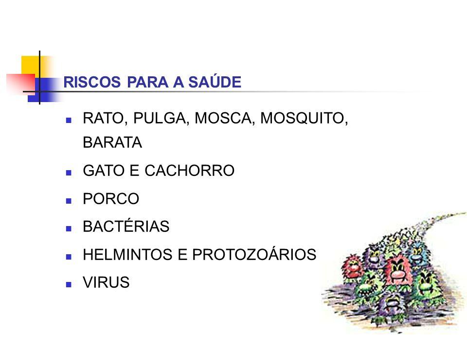 RISCOS PARA A SAÚDE RATO, PULGA, MOSCA, MOSQUITO, BARATA GATO E CACHORRO PORCO BACTÉRIAS HELMINTOS E PROTOZOÁRIOS VIRUS
