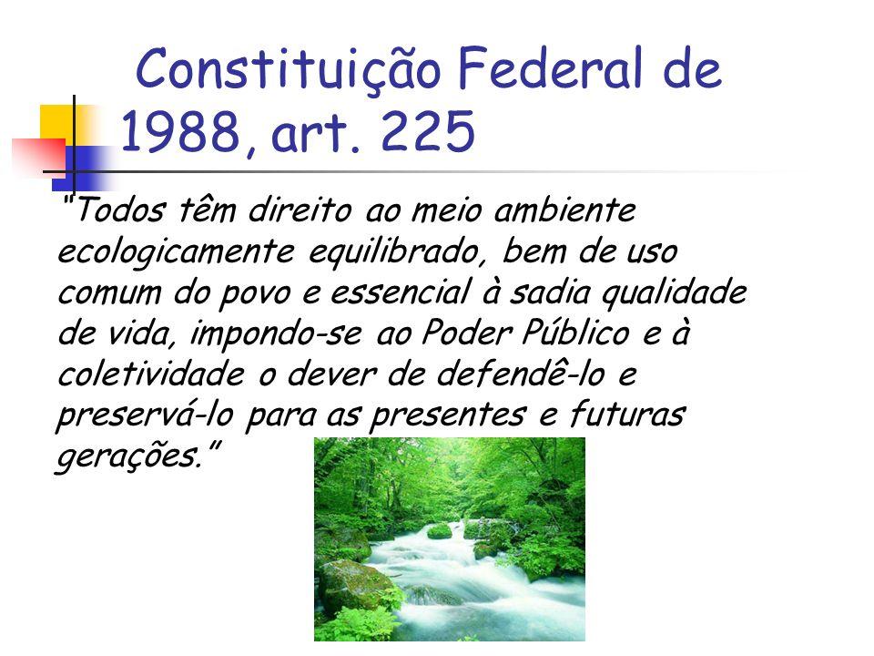 Constituição Federal de 1988, art. 225 Todos têm direito ao meio ambiente ecologicamente equilibrado, bem de uso comum do povo e essencial à sadia qua