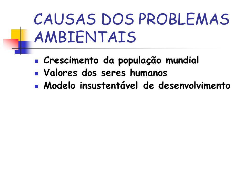 CAUSAS DOS PROBLEMAS AMBIENTAIS Crescimento da população mundial Valores dos seres humanos Modelo insustentável de desenvolvimento