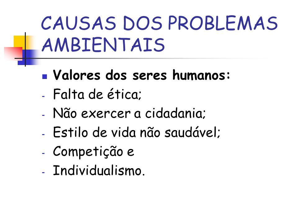 CAUSAS DOS PROBLEMAS AMBIENTAIS Valores dos seres humanos: - Falta de ética; - Não exercer a cidadania; - Estilo de vida não saudável; - Competição e