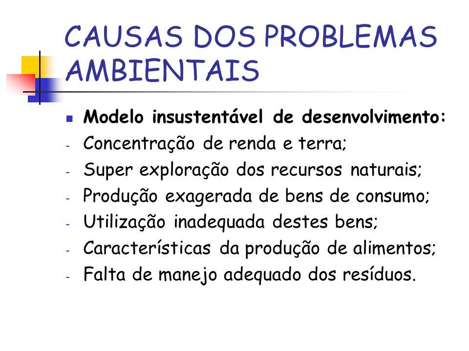 CAUSAS DOS PROBLEMAS AMBIENTAIS Modelo insustentável de desenvolvimento: - Concentração de renda e terra; - Super exploração dos recursos naturais; -