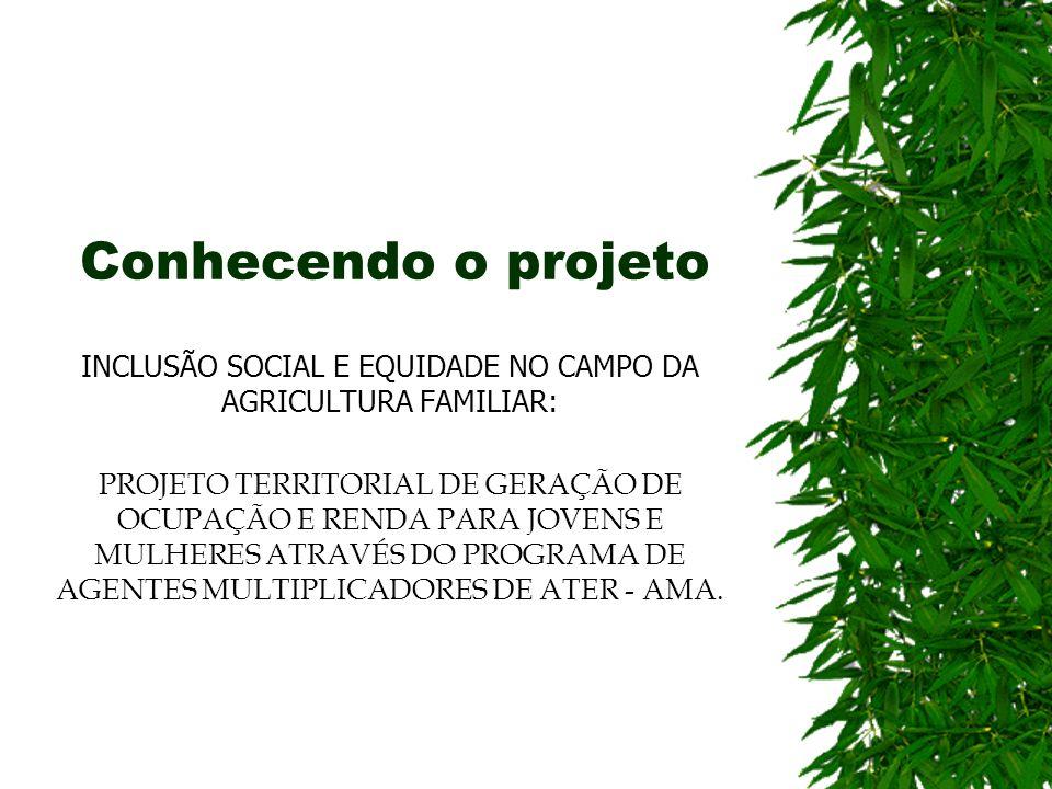 Conhecendo o projeto INCLUSÃO SOCIAL E EQUIDADE NO CAMPO DA AGRICULTURA FAMILIAR: PROJETO TERRITORIAL DE GERAÇÃO DE OCUPAÇÃO E RENDA PARA JOVENS E MUL
