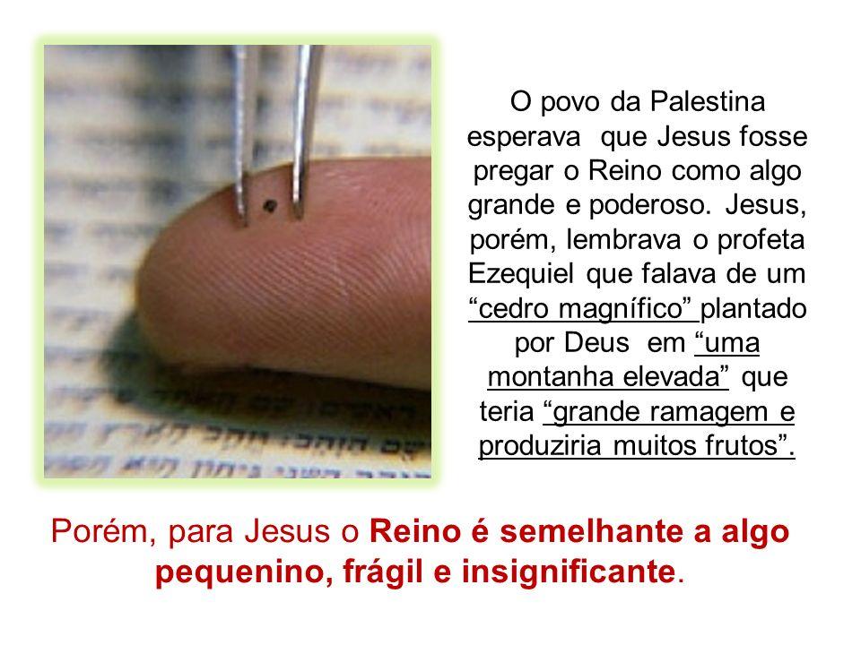 Como podia Jesus comparar o poder salvador de Deus com um arbusto saído de uma semente tão pequenina.