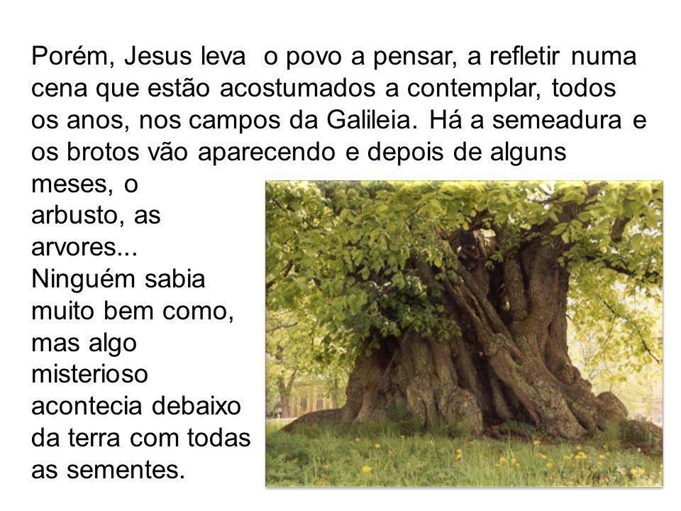 Porém, Jesus leva o povo a pensar, a refletir numa cena que estão acostumados a contemplar, todos os anos, nos campos da Galileia. Há a semeadura e os
