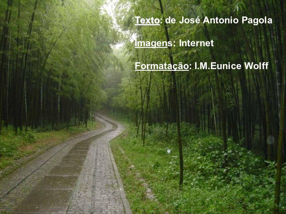 Texto Texto: de José Antonio Pagola Imagens: Internet Formatação: I.M.Eunice Wolff