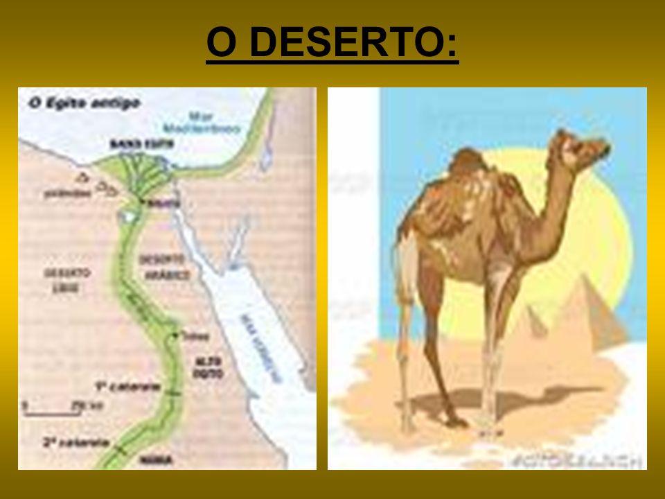 O DESERTO: