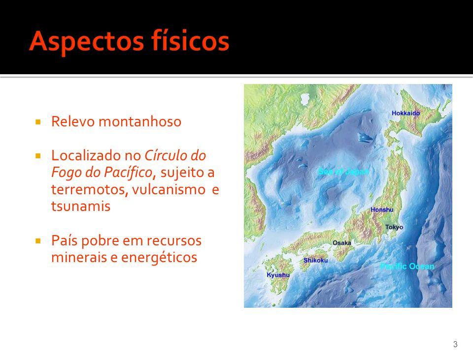 Relevo montanhoso Localizado no Círculo do Fogo do Pacífico, sujeito a terremotos, vulcanismo e tsunamis País pobre em recursos minerais e energéticos