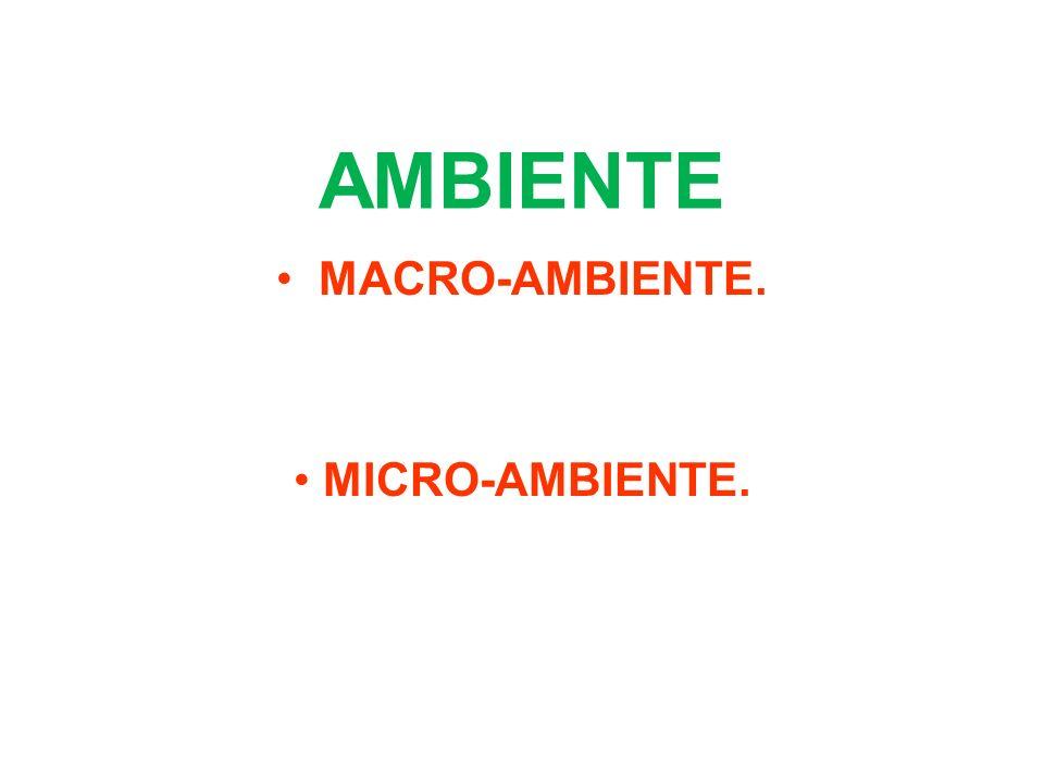 AMBIENTE MACRO-AMBIENTE. MICRO-AMBIENTE.