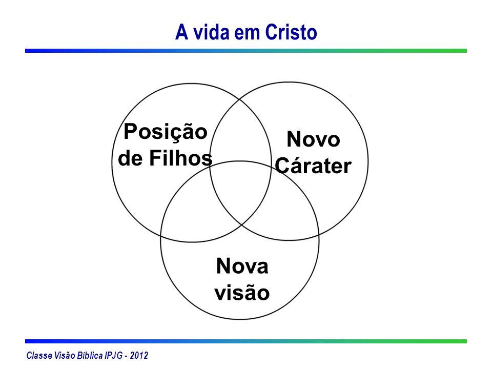 Classe Visão Bíblica IPJG - 2012 A vida em Cristo Posição de Filhos Novo Cárater Nova visão