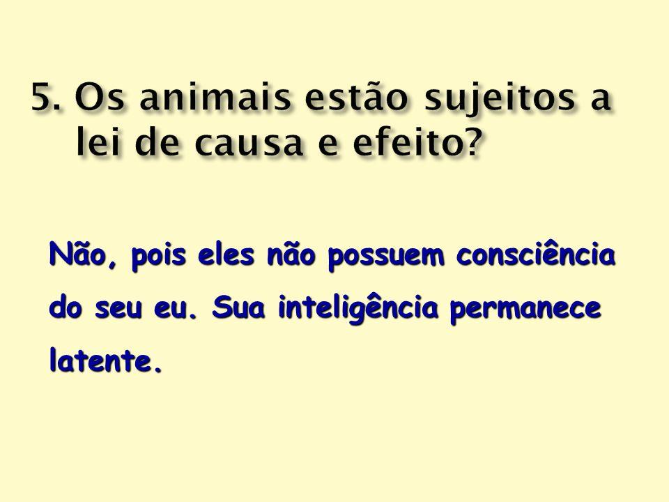 Não, pois eles não possuem consciência do seu eu. Sua inteligência permanece latente.
