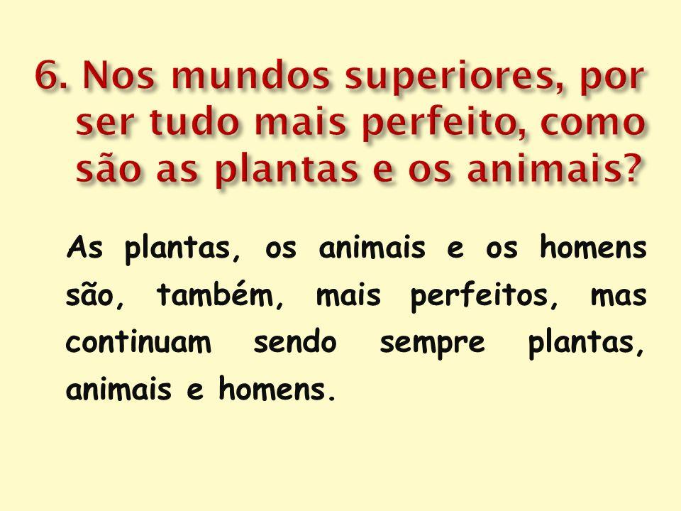 As plantas, os animais e os homens são, também, mais perfeitos, mas continuam sendo sempre plantas, animais e homens.