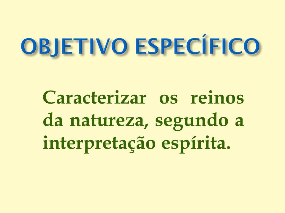 Caracterizar os reinos da natureza, segundo a interpretação espírita.