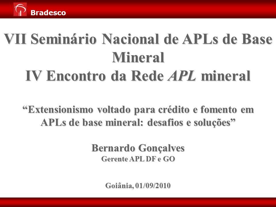 Expansão de Negócios para Varejo Diretoria de Pessoa Jurídica 1 Bradesco VII Seminário Nacional de APLs de Base Mineral IV Encontro da Rede APL minera