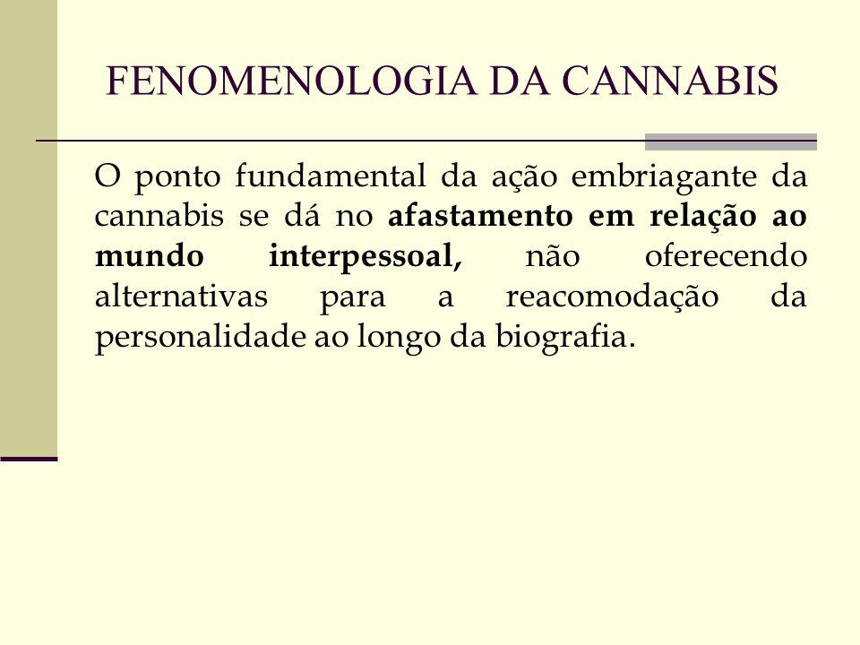 FENOMENOLOGIA DA CANNABIS O ponto fundamental da ação embriagante da cannabis se dá no afastamento em relação ao mundo interpessoal, não oferecendo al