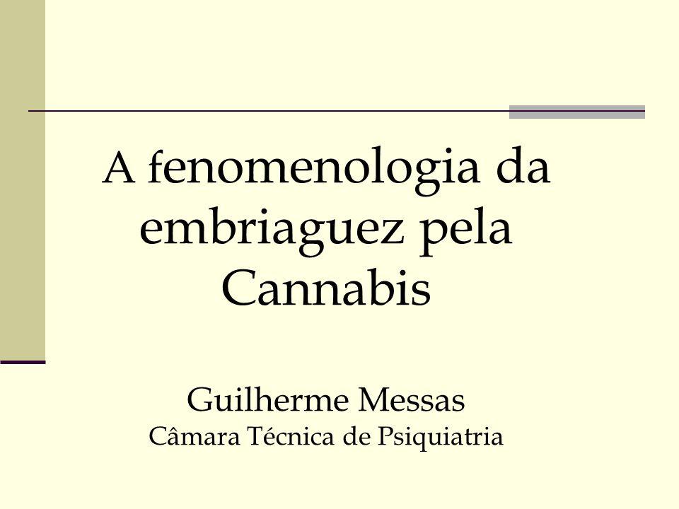 A f enomenologia da embriaguez pela Cannabis Guilherme Messas Câmara Técnica de Psiquiatria