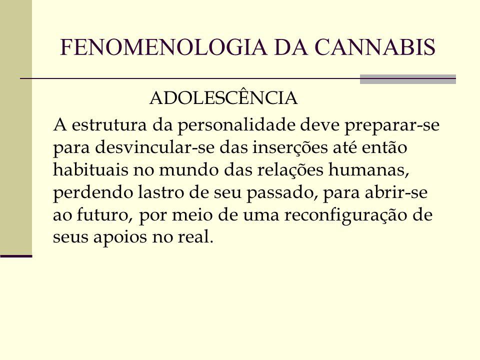 FENOMENOLOGIA DA CANNABIS ADOLESCÊNCIA A estrutura da personalidade deve preparar-se para desvincular-se das inserções até então habituais no mundo da