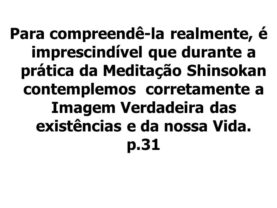 Para compreendê-la realmente, é imprescindível que durante a prática da Meditação Shinsokan contemplemos corretamente a Imagem Verdadeira das existênc