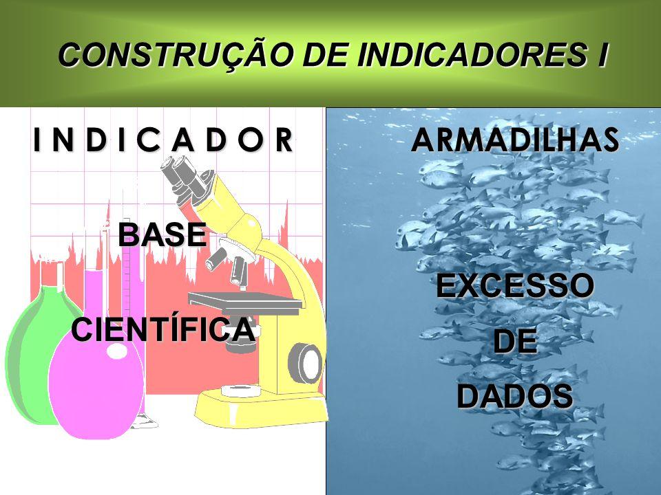 CONSTRUÇÃO DE INDICADORES I I N D I C A D O R BASECIENTÍFICAARMADILHASEXCESSODEDADOS