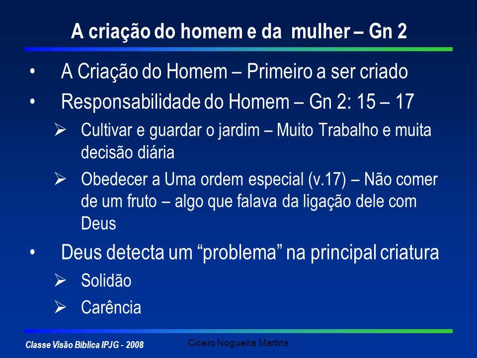 Classe Visão Bíblica IPJG - 2008 Cicero Nogueira Martins A criação do homem e da mulher – Gn 2 A Criação do Homem – Primeiro a ser criado Responsabili