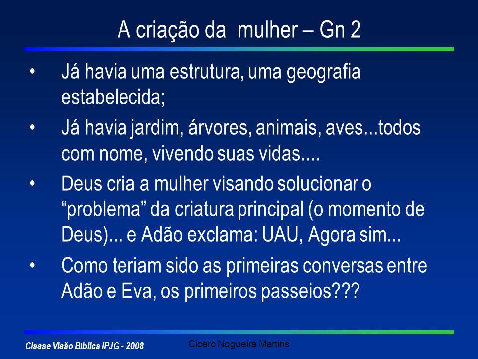 Classe Visão Bíblica IPJG - 2008 Cicero Nogueira Martins A criação da mulher – Gn 2 Já havia uma estrutura, uma geografia estabelecida; Já havia jardi
