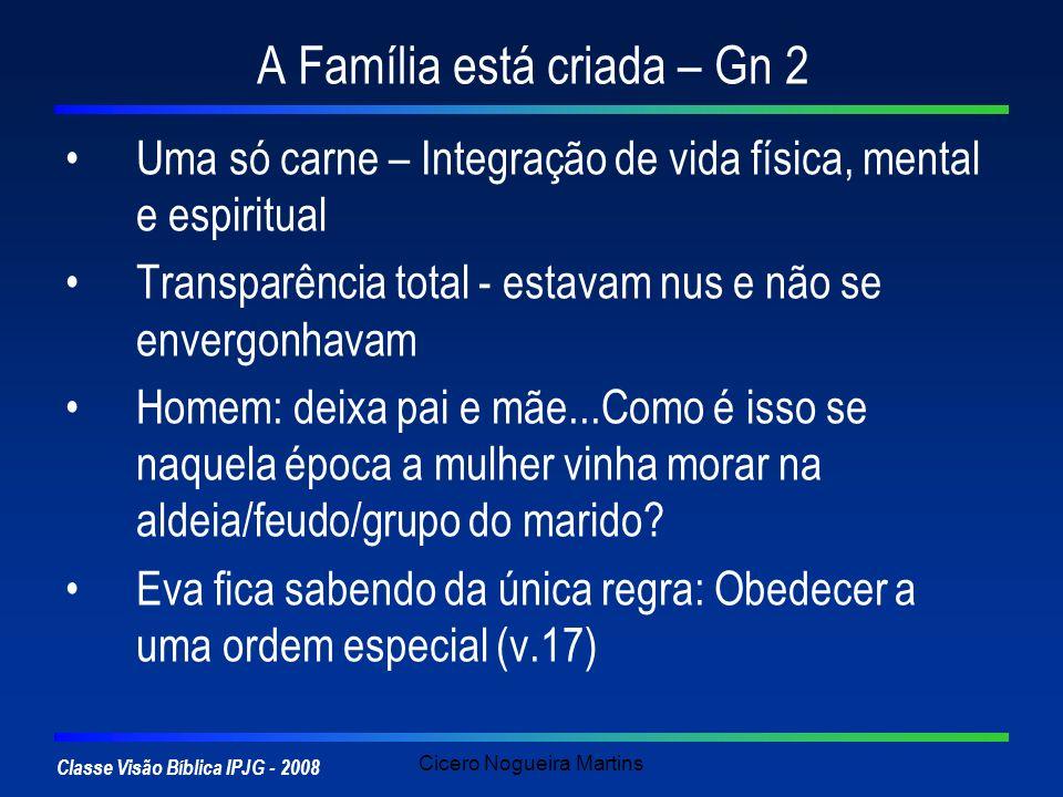 Classe Visão Bíblica IPJG - 2008 Cicero Nogueira Martins A Família está criada – Gn 2 Uma só carne – Integração de vida física, mental e espiritual Tr