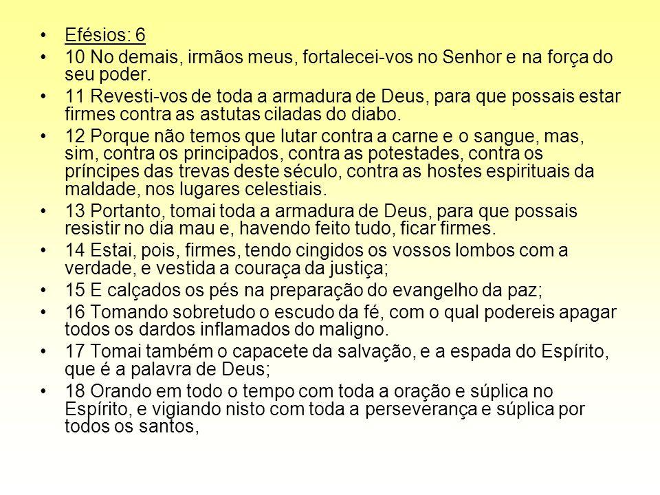 Efésios: 6 10 No demais, irmãos meus, fortalecei-vos no Senhor e na força do seu poder. 11 Revesti-vos de toda a armadura de Deus, para que possais es