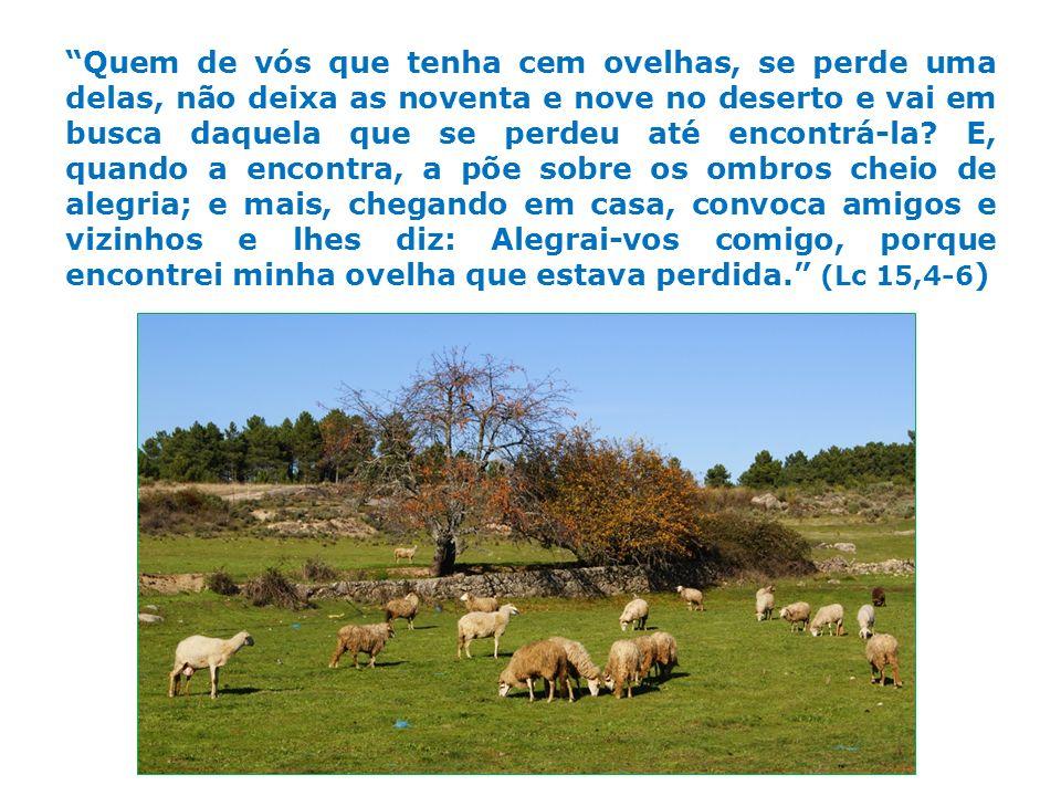 Quem de vós que tenha cem ovelhas, se perde uma delas, não deixa as noventa e nove no deserto e vai em busca daquela que se perdeu até encontrá-la? E,