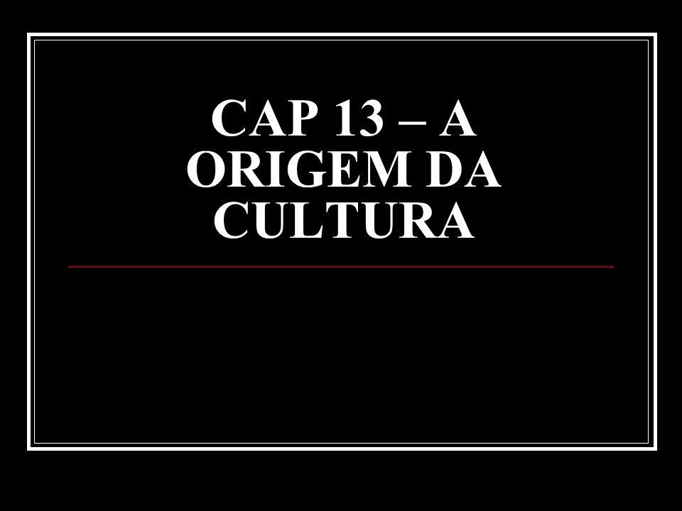 CAP 13 – A ORIGEM DA CULTURA