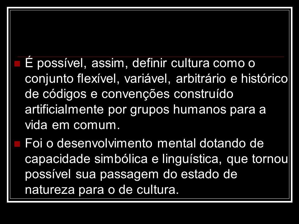 É possível, assim, definir cultura como o conjunto flexível, variável, arbitrário e histórico de códigos e convenções construído artificialmente por g