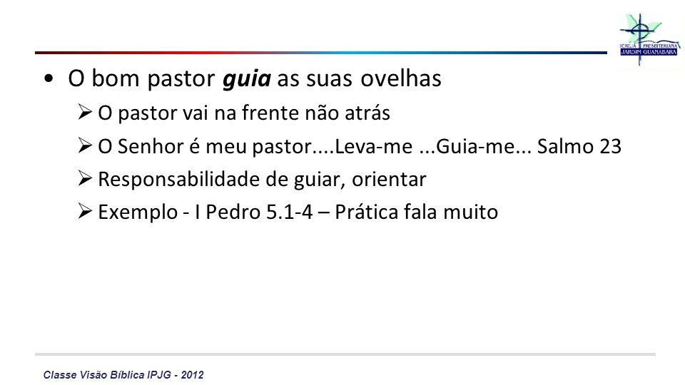 Classe Visão Bíblica IPJG - 2012 O bom pastor guia as suas ovelhas O pastor vai na frente não atrás O Senhor é meu pastor....Leva-me...Guia-me... Salm