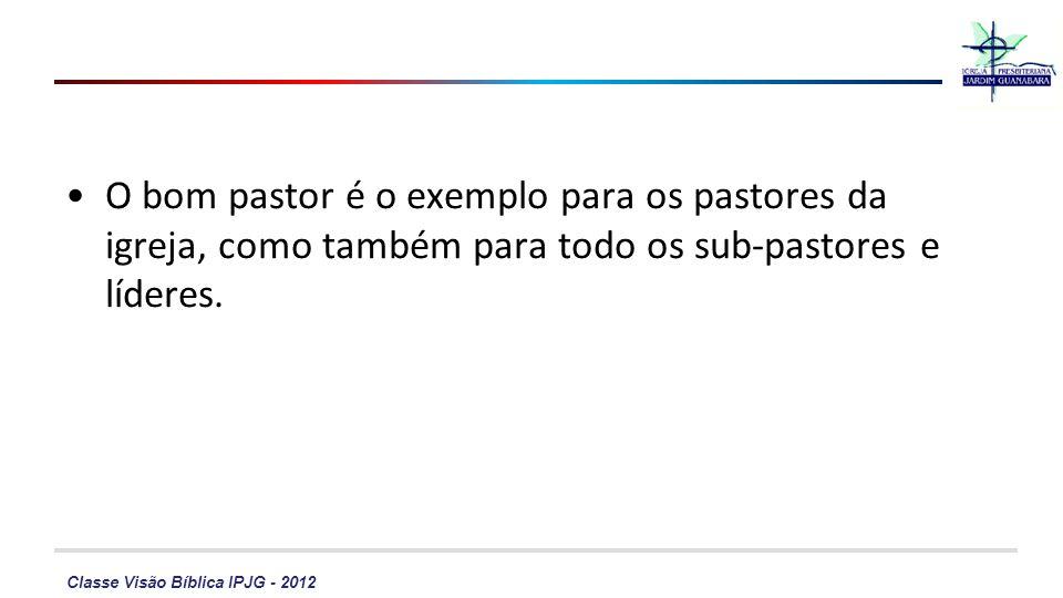 Classe Visão Bíblica IPJG - 2012 O bom pastor é o exemplo para os pastores da igreja, como também para todo os sub-pastores e líderes.