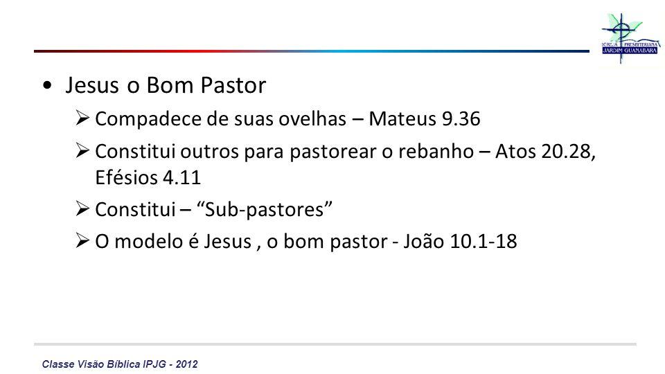 Classe Visão Bíblica IPJG - 2012 Jesus o Bom Pastor Compadece de suas ovelhas – Mateus 9.36 Constitui outros para pastorear o rebanho – Atos 20.28, Efésios 4.11 Constitui – Sub-pastores O modelo é Jesus, o bom pastor - João 10.1-18