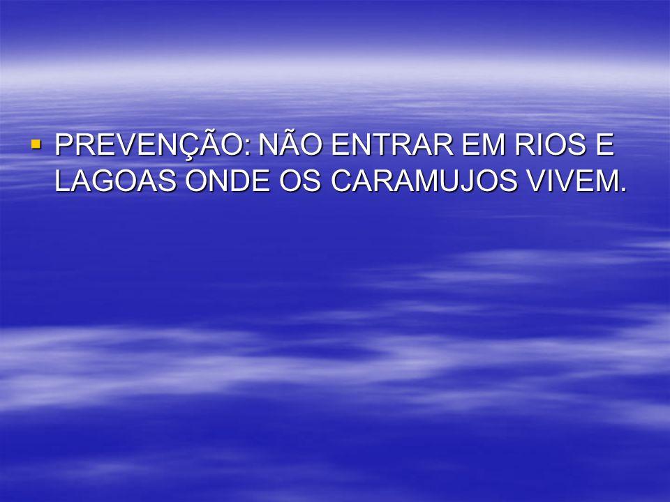 PREVENÇÃO: NÃO ENTRAR EM RIOS E LAGOAS ONDE OS CARAMUJOS VIVEM. PREVENÇÃO: NÃO ENTRAR EM RIOS E LAGOAS ONDE OS CARAMUJOS VIVEM.