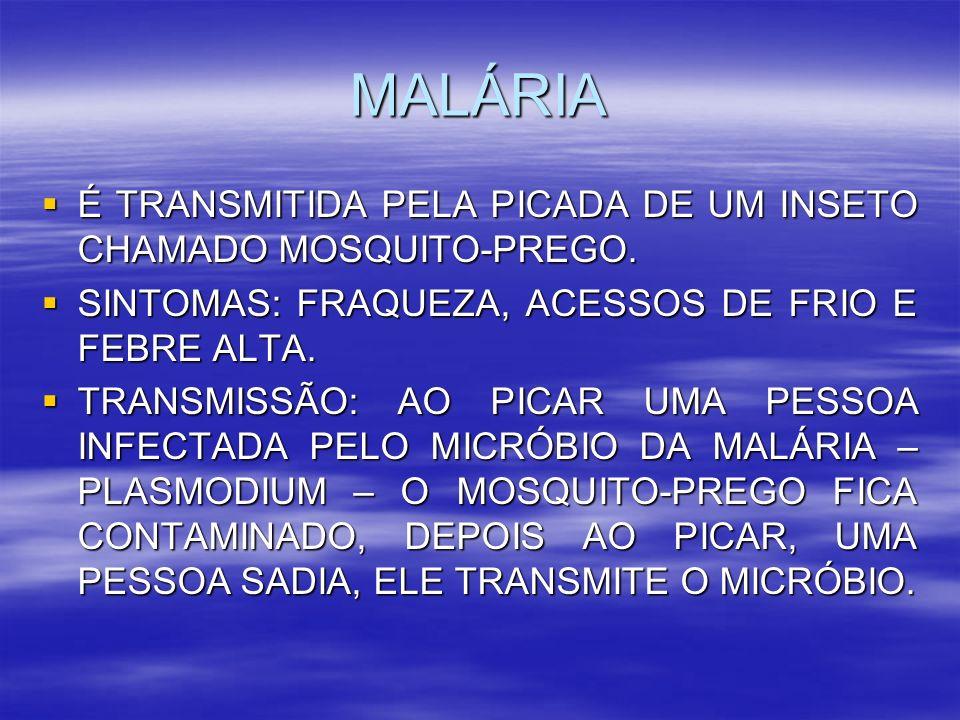 MALÁRIA É TRANSMITIDA PELA PICADA DE UM INSETO CHAMADO MOSQUITO-PREGO. É TRANSMITIDA PELA PICADA DE UM INSETO CHAMADO MOSQUITO-PREGO. SINTOMAS: FRAQUE
