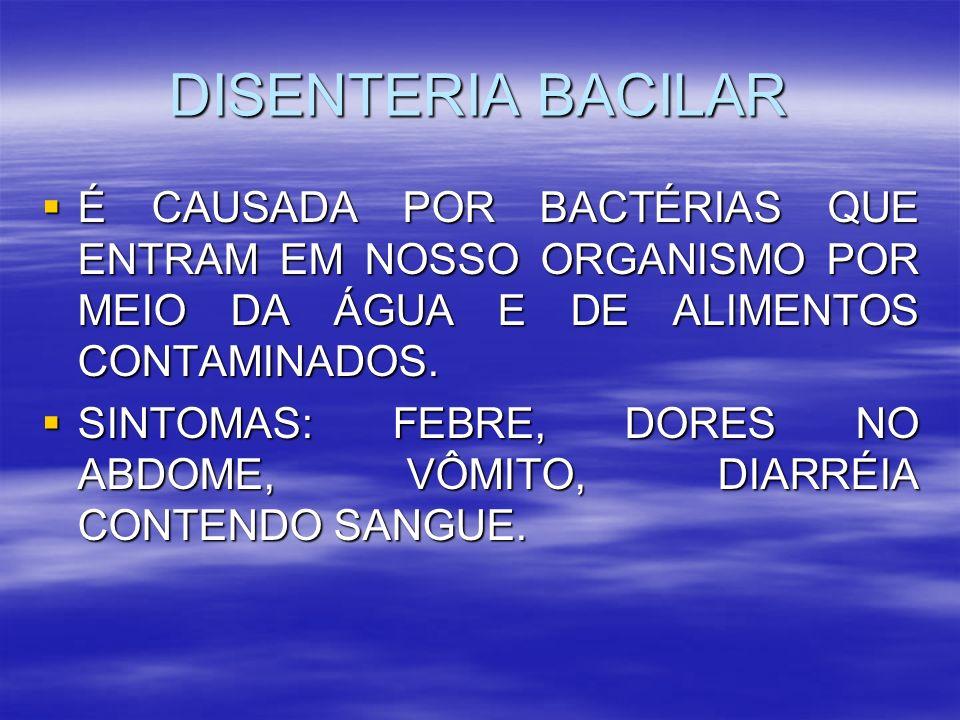 DISENTERIA BACILAR É CAUSADA POR BACTÉRIAS QUE ENTRAM EM NOSSO ORGANISMO POR MEIO DA ÁGUA E DE ALIMENTOS CONTAMINADOS. É CAUSADA POR BACTÉRIAS QUE ENT