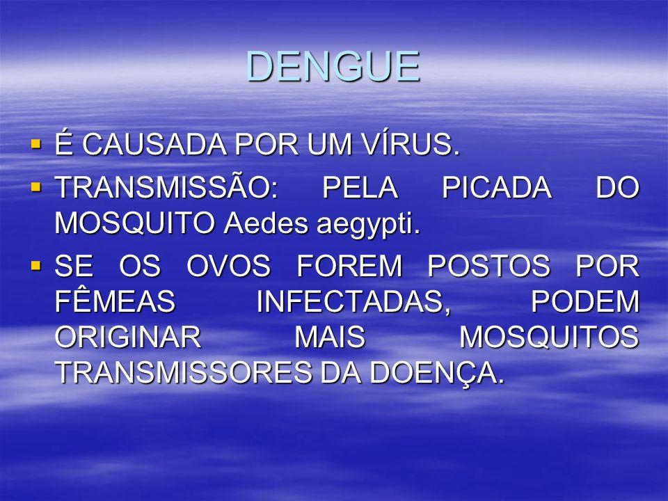 DENGUE É CAUSADA POR UM VÍRUS. É CAUSADA POR UM VÍRUS. TRANSMISSÃO: PELA PICADA DO MOSQUITO Aedes aegypti. TRANSMISSÃO: PELA PICADA DO MOSQUITO Aedes