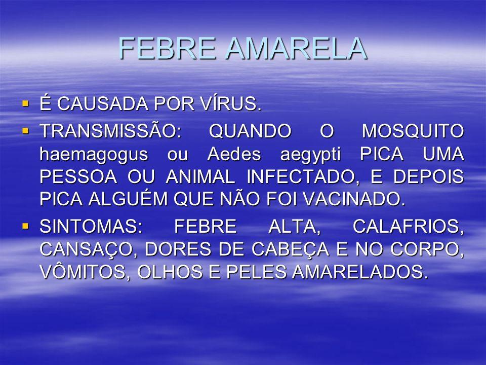 FEBRE AMARELA É CAUSADA POR VÍRUS. É CAUSADA POR VÍRUS. TRANSMISSÃO: QUANDO O MOSQUITO haemagogus ou Aedes aegypti PICA UMA PESSOA OU ANIMAL INFECTADO
