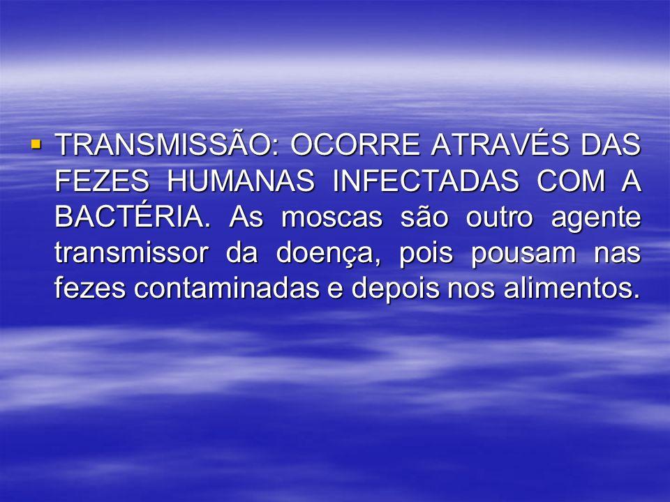 TRANSMISSÃO: OCORRE ATRAVÉS DAS FEZES HUMANAS INFECTADAS COM A BACTÉRIA. As moscas são outro agente transmissor da doença, pois pousam nas fezes conta