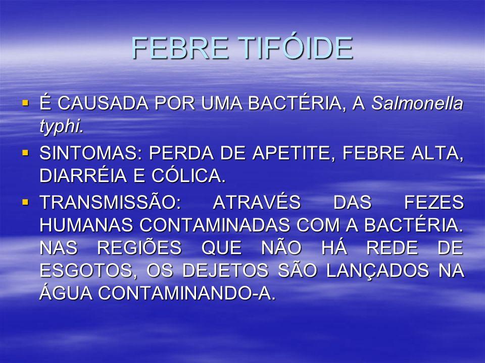 FEBRE TIFÓIDE É CAUSADA POR UMA BACTÉRIA, A Salmonella typhi. É CAUSADA POR UMA BACTÉRIA, A Salmonella typhi. SINTOMAS: PERDA DE APETITE, FEBRE ALTA,