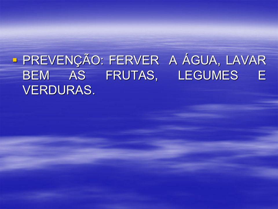 PREVENÇÃO: FERVER A ÁGUA, LAVAR BEM AS FRUTAS, LEGUMES E VERDURAS. PREVENÇÃO: FERVER A ÁGUA, LAVAR BEM AS FRUTAS, LEGUMES E VERDURAS.