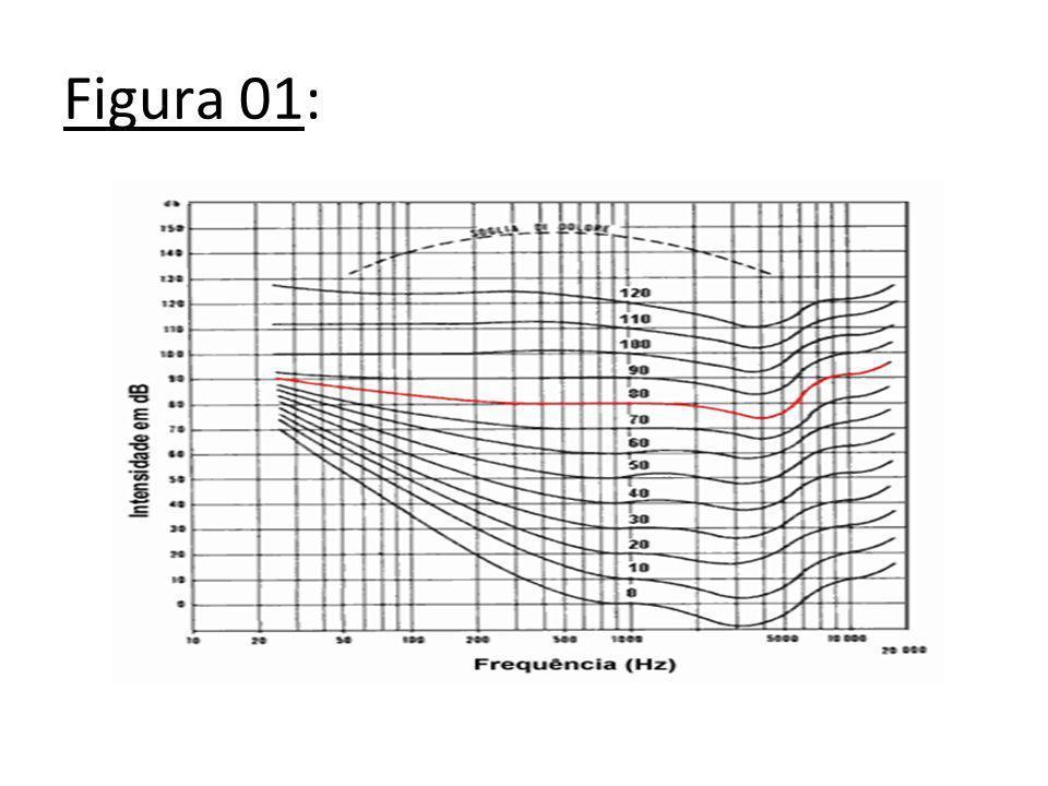 O homem consegue ouvir sons entre 20 e 20.000Hz, mas nem todos os seres têm esta particularidade.