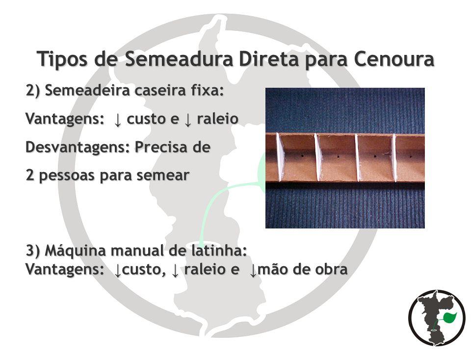 Tipos de Semeadura Direta para Cenoura 2) Semeadeira caseira fixa: Vantagens: custo e raleio Desvantagens: Precisa de 2 pessoas para semear 3) Máquina