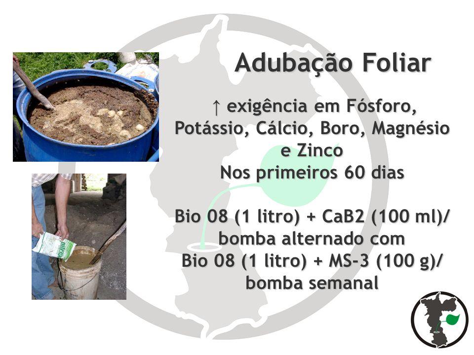 Adubação Foliar Adubação Foliar exigência em Fósforo, Potássio, Cálcio, Boro, Magnésio e Zinco exigência em Fósforo, Potássio, Cálcio, Boro, Magnésio