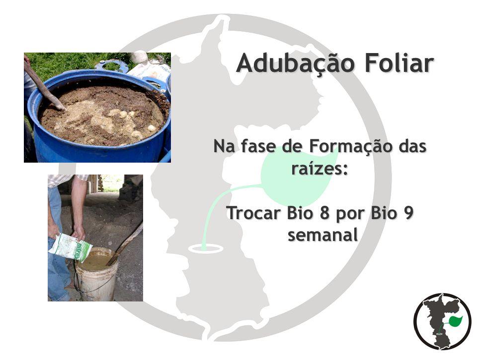 Adubação Foliar Adubação Foliar Na fase de Formação das raízes: Trocar Bio 8 por Bio 9 semanal semanal
