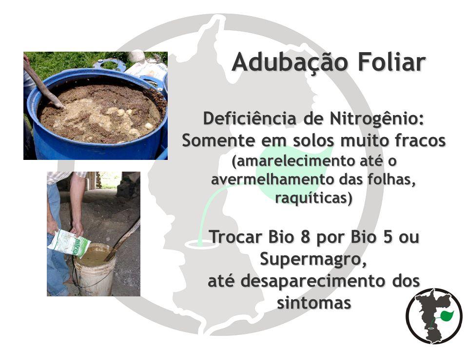 Adubação Foliar Adubação Foliar Deficiência de Nitrogênio: Somente em solos muito fracos (amarelecimento até o avermelhamento das folhas, raquíticas)